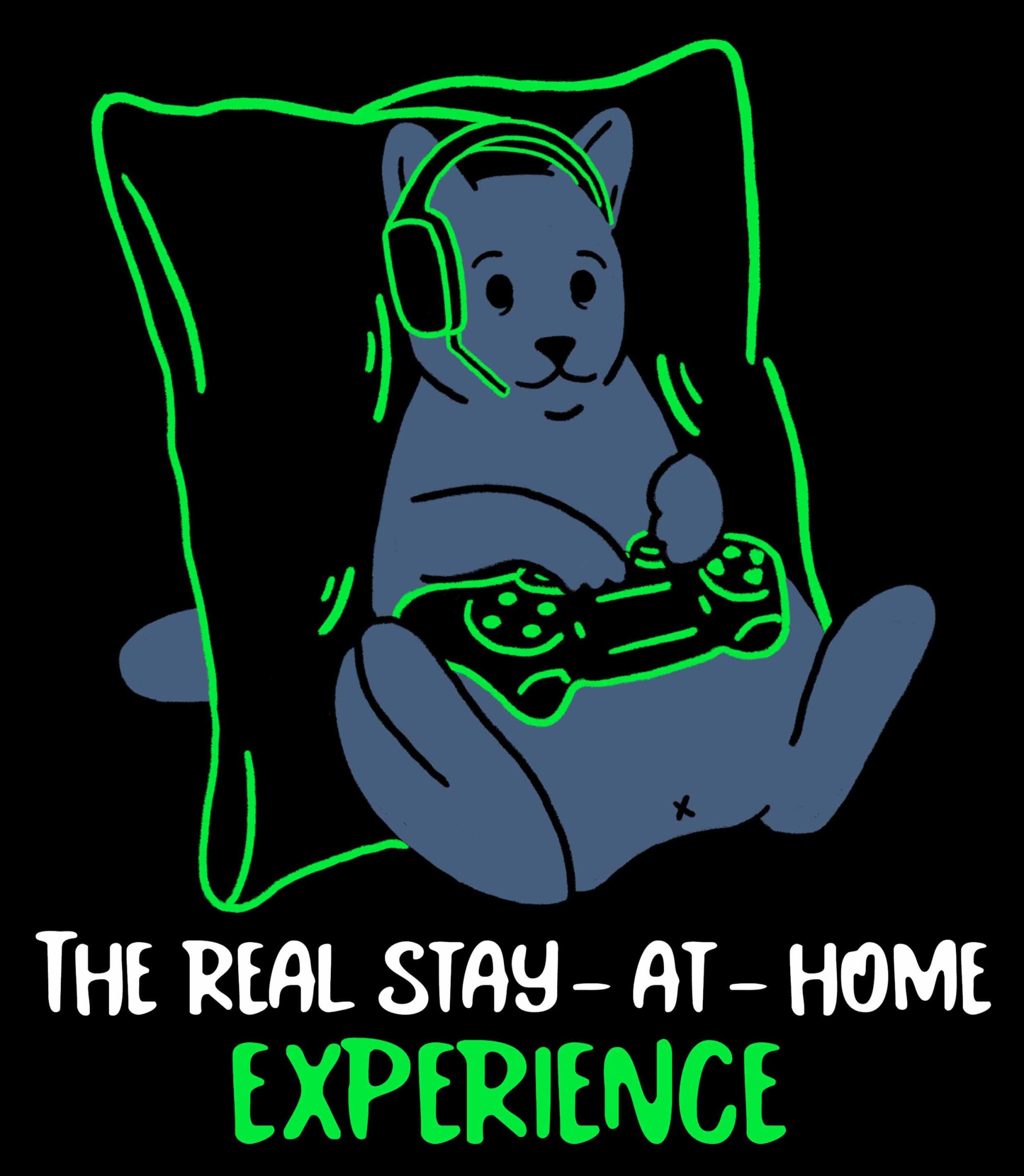 the real stay at home gamer experience WEB.jpg